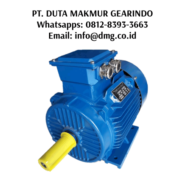 jual electric motor