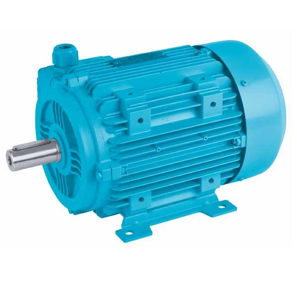 Distributor Gearbox Motor