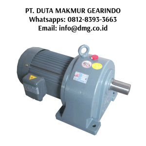 Supplier Gearbox Motor