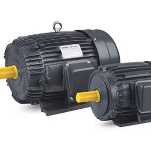 Jual Electric Motor Teco